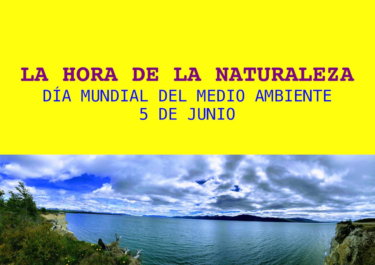 Día mundial del Ambiente - 5 junio | ONG Carmelitas